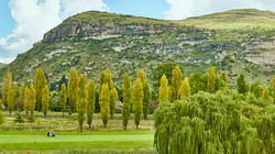 Clarens Golf Estate Autumn 6 crop