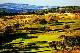 Olivewood-Private-Estate-Golf-Club-Easte