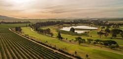 Devonvale Golf & Vines 14-001