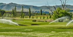 Clarens Golf Estate Spring 1 crop