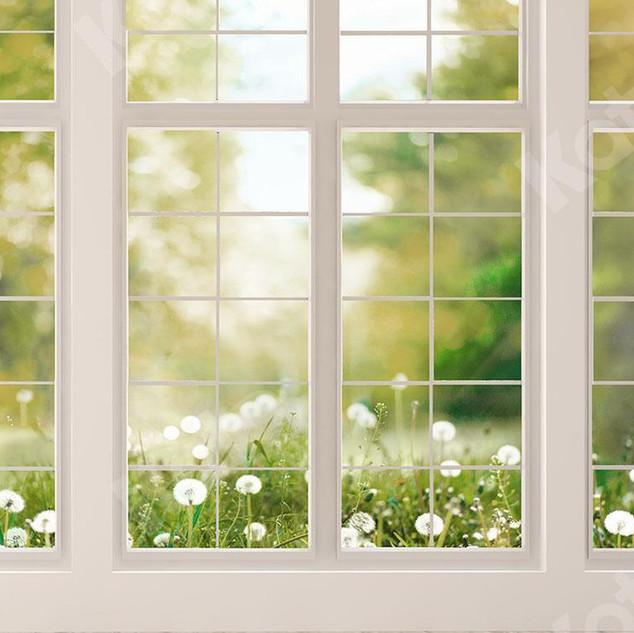 fond de scène fenêtre sur le printemps