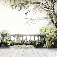 balcon et fleurs blanches