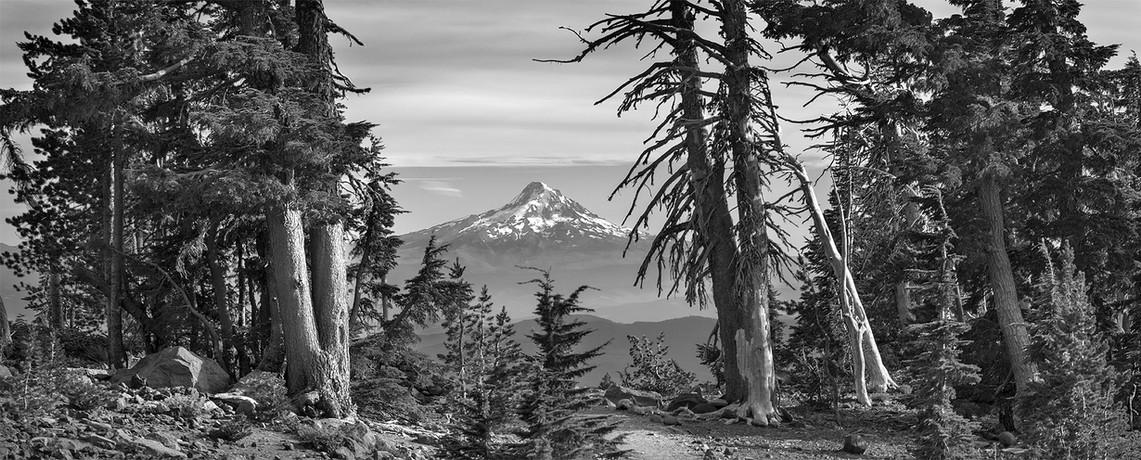 Mt. Hood, Pano