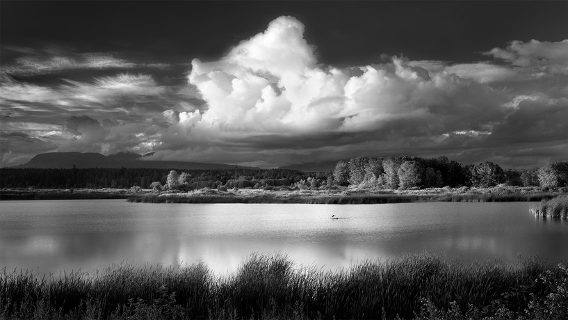 Iona, Heron, Cloud