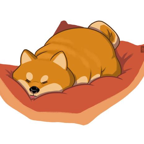 Sleep Pup!