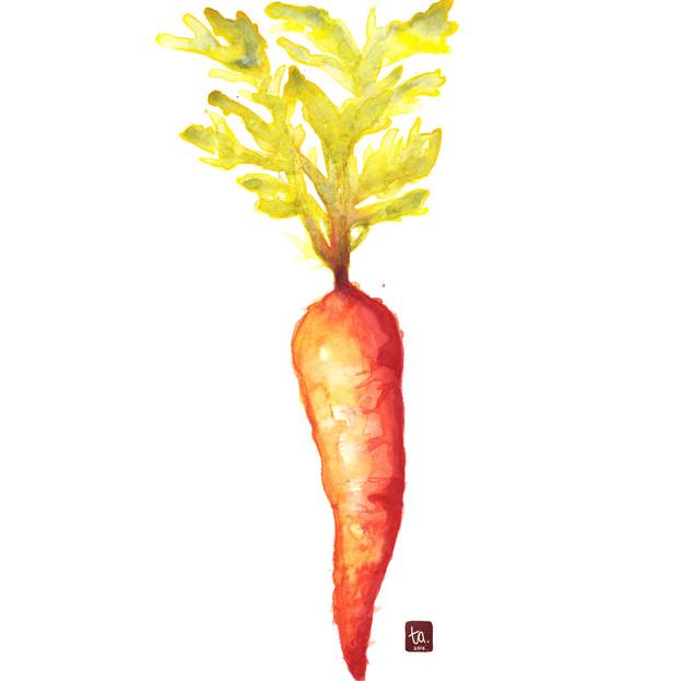 """""""Carrot"""""""