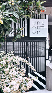 Welcome to Uncommon