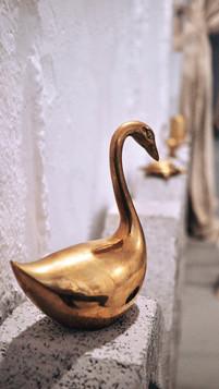 Swan Detail Uncommon