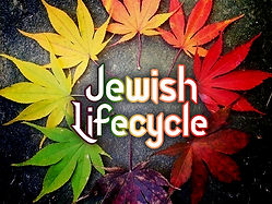 jewish-lifecycle.jpg