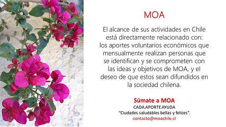 Campaña_súmate_a_MOA_5.jpg