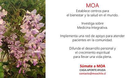 Campaña_súmate_a_MOA_4.jpg