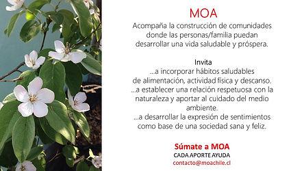 Campaña_súmate_a_MOA_3.jpg