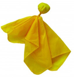 TAG Referee Flag