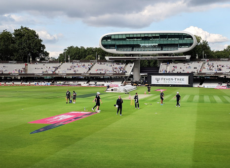 RX Architects attend T20 Blast cricket match at Lord's cricket ground