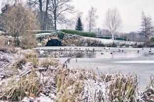 Cusworth in the Snow