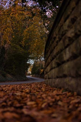 Sprotbrough in Autumn
