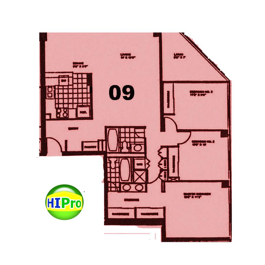 Royal Iolani Court Plaza unit 09