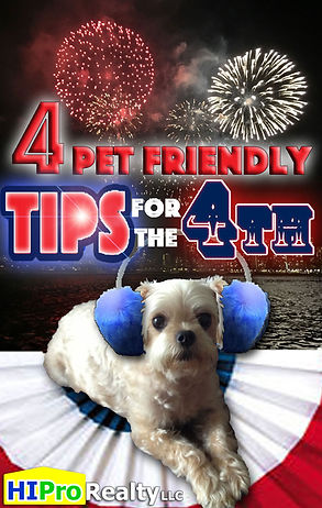 4 pet friendly tips for the fourth of july