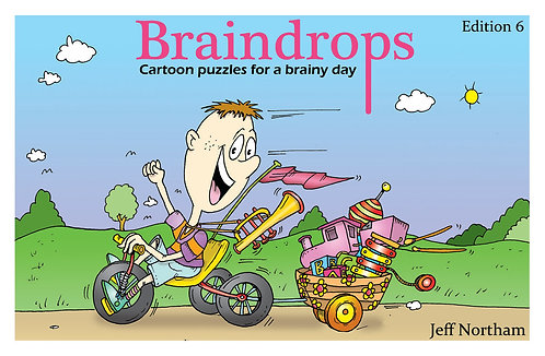 Braindrops Puzzle Book edition 6