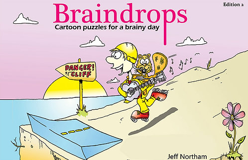 Braindrops Puzzle Book edition 2