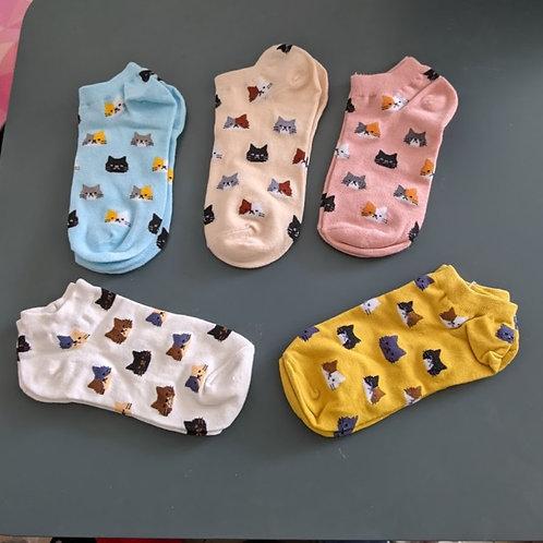 גרביים חתולים