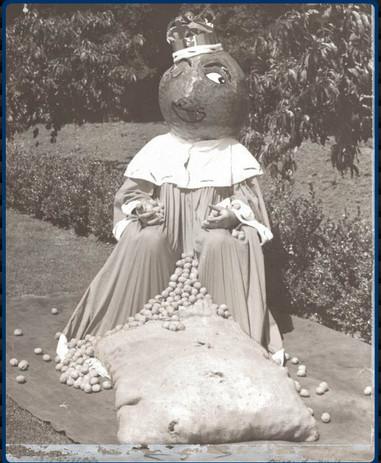 The Original King Walnut