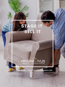 STAGE IT SELL IT  COVER CHRISTINE RIVLIN