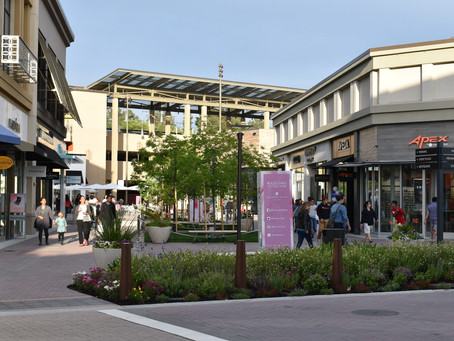 The Unique Community of Walnut Creek