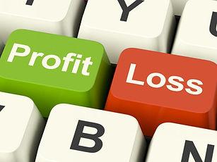profitloss2.jpg