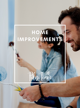 HOME IMPROVEMENTS COVER pelosi.png