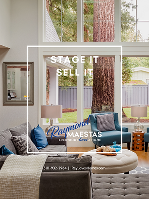 STAGE IT SELL IT COVER RAY MAESTAS.png