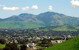 WALNUT CREEK 1.jpg