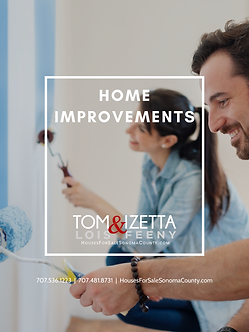 HOME IMPROVEMENTS COVER TOM LOIS.png