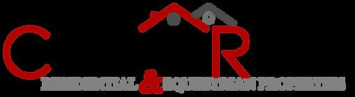 Christine Rivlin logo color  t.png
