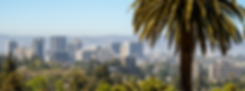 CITY PAGE BANNER.png