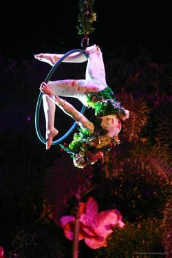 Acrobat productions