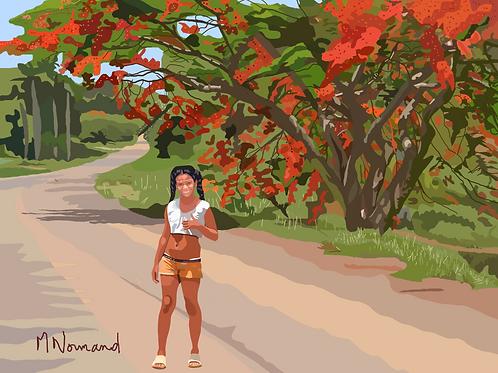 Cuba-piste de Las Terrazas/ Poster encadré bois 30x45