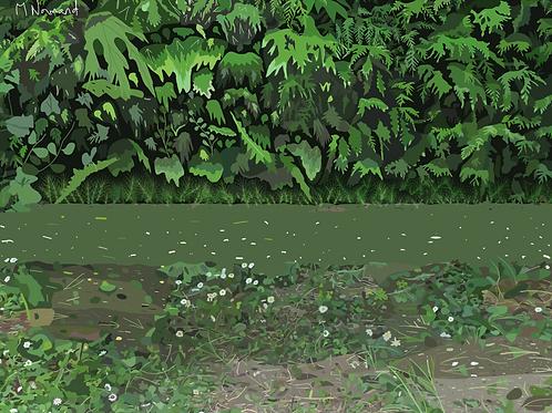 Un étang quelque part/Papier japonais sans cadre 30x40