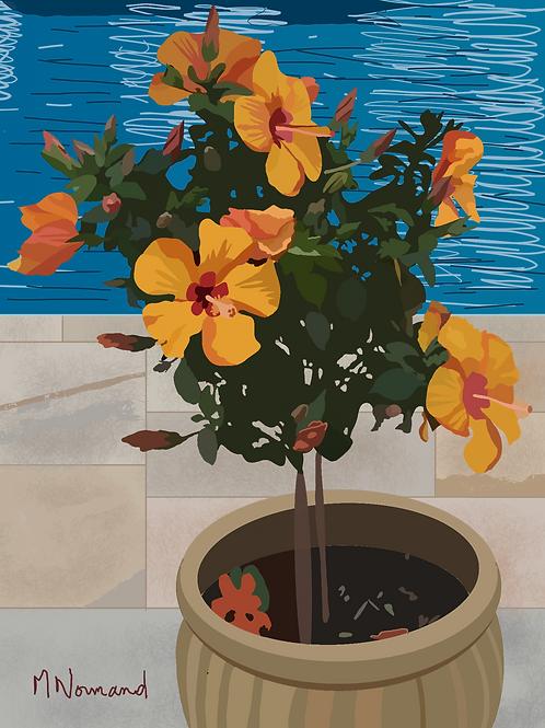 hibiscus/ Papier japonais sans cadre 30x40