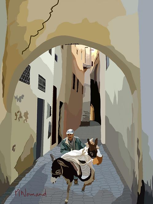 Maroc-Fès/ Poster encadré bois 30x45