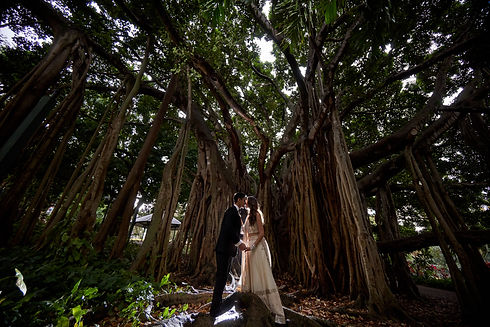Image of newly weds kissing under a tree with vines | Alegna Weddings