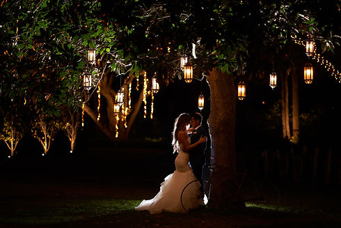 Image of bride and groom under a tree with lights | Alegna Wedding Videography and Photography