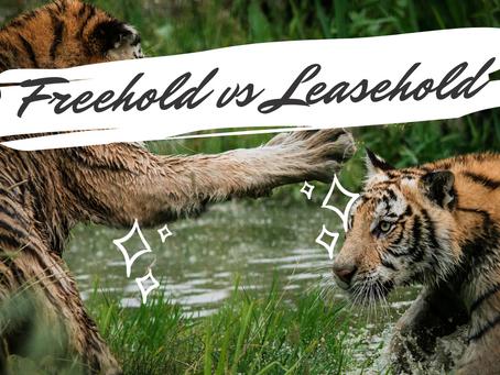 Freehold vs. Leasehold Properties