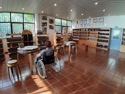 ♿ Tour di mezza giornata in sedia a rotelle / handicap di Cabo Girao