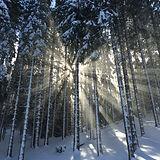 snow pic.jpeg