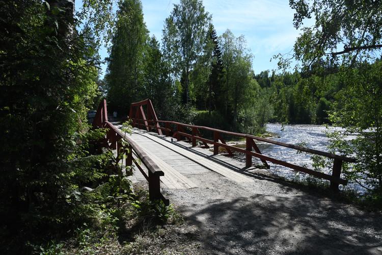 Den vackra träbron
