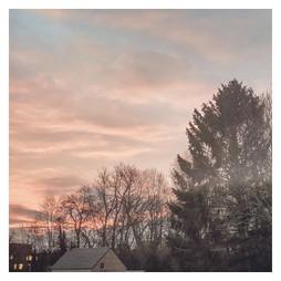 Pink Mornings