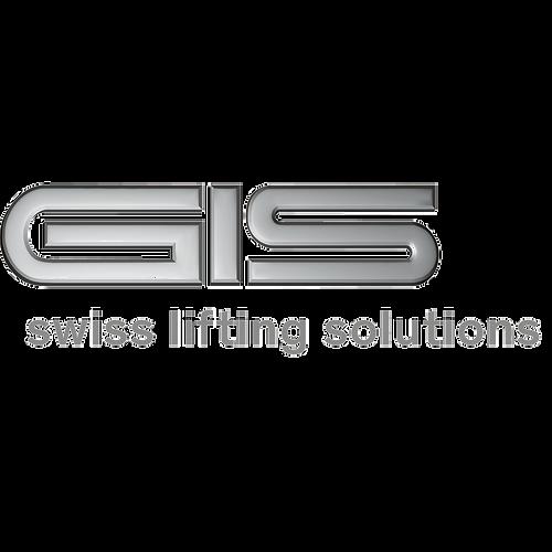 GIS logo