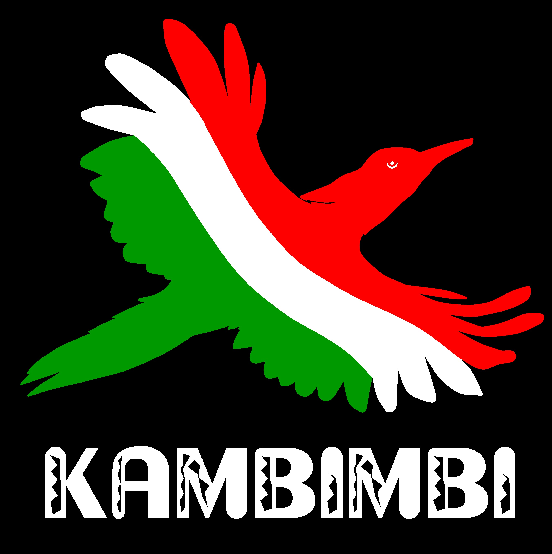 Kambimbi: African Rain Bird