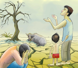 Illustration (International)